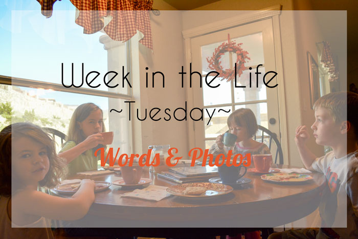 Week in the Life | Tuesday Words & Photos